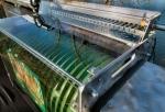 Rollycarp STANDARD Automata 11,15,20,24mm